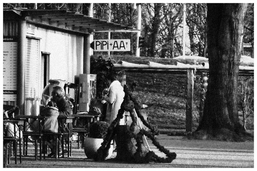 #PIPI+AA, #öffentliche Toilette, #Kaisergarten, #Oberhausen