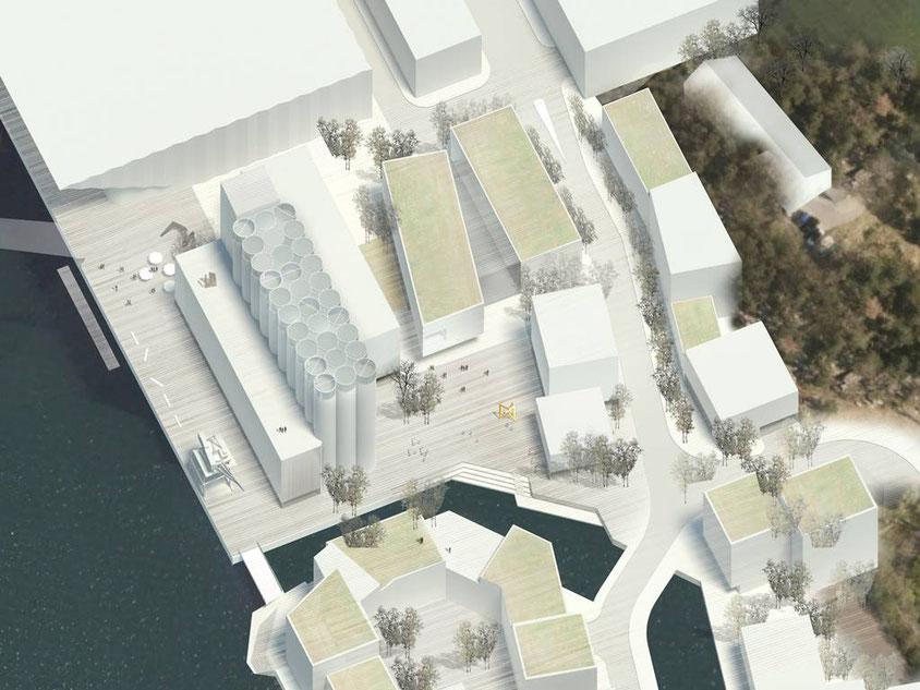 Figura 3: Vista aérea del Museo y el área colindante