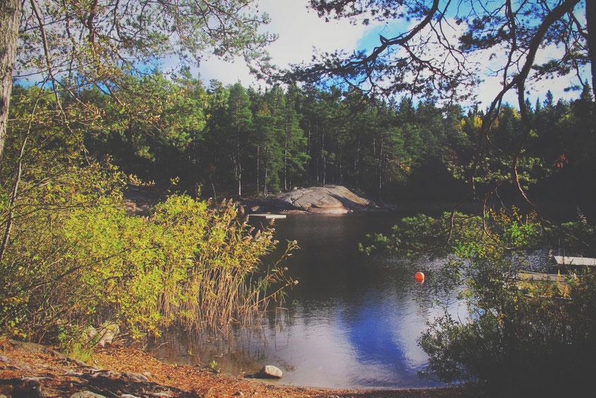 lac forêt suède bigousteppes rocher arbres
