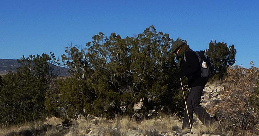 Dinosaur Dig, Ojito Wilderness, hike, New Mexico