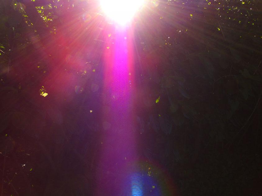 Lichtkanal magentafarben, Quelle: www.lichtwesenfotografie.com