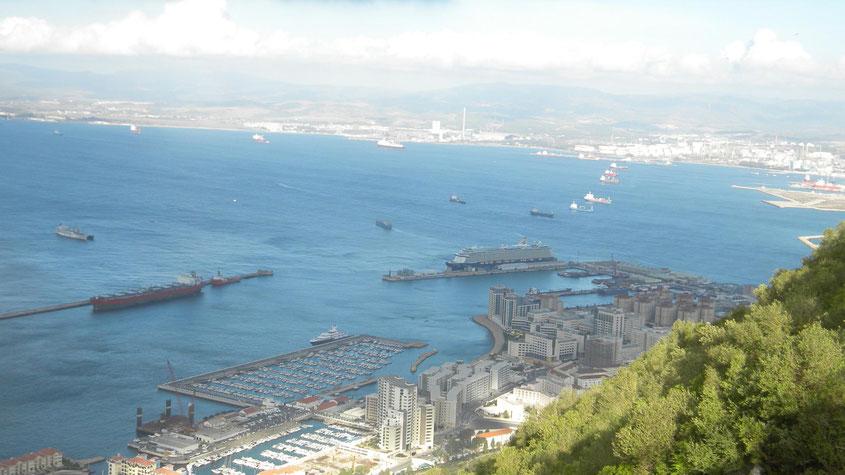 Blick vom Affenfelsen auf das Kreuzfahrtschiff im Hafen