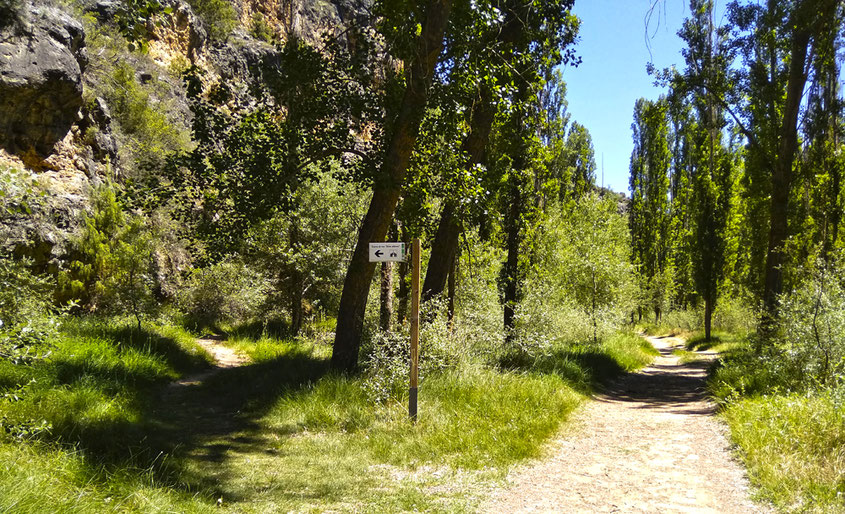 Senda Larga entre Villaseca y Sepúlveda