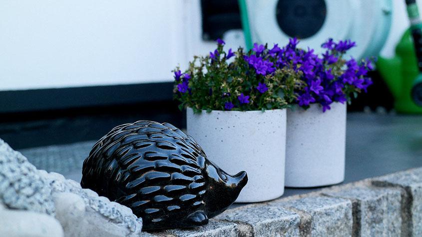 Hola Hola, der Herbst ist da und mit ihm all die wunderbaren Deko Trends, die aus Deinem Zuhause im Handumdrehen eine Wohlfühloase zaubern. Von Mini Kürbissen über stylishe Edelstahl Laternen bis hin zu leuchtenden Blumen & coolen Gräsern | Hot Port Life & Style | www.hot-port.de | Mode & Lifestyle Blog für Trendsetter und solche, die es gern werden möchten