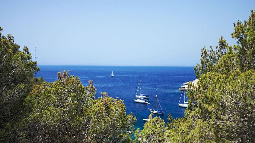 Ibiza Insider Tipps | Cala Salada Bucht San Antonio