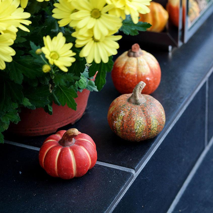 Hola Hola, der Herbst ist da und mit ihm all die wunderbaren Deko Trends, die aus Deinem Zuhause im Handumdrehen eine Wohlfühloase zaubern. Von coolen Rattan Übertöpfen über Mini Kürbisse bis hin zu leuchtenden Blumen & coolen Gräsern | Hot Port Life & Style | www.hot-port.de | Mode & Lifestyle Blog für Trendsetter und solche, die es gern werden möchten