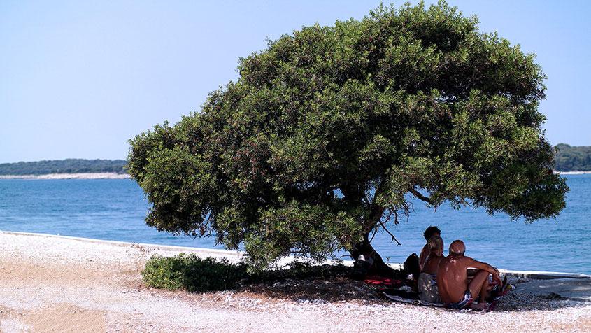 Hotspot Istrien | Wunderschönes Kroatien #croatiandays | Kurztrip nach Fazana | hot-port.de | 30+ Lifestyle Blog