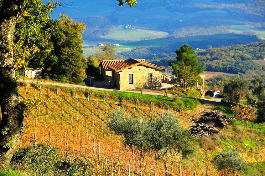De ligging van Azienda Agricola Tornesi in Le Benducce