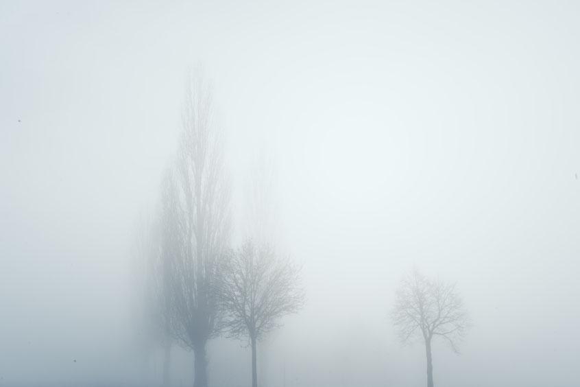 ROVA FineArt Photography - surreal