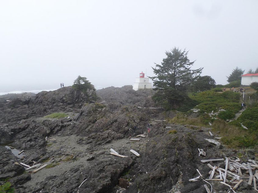 Wild Pacific Trail .. Lighthouse Loop Image