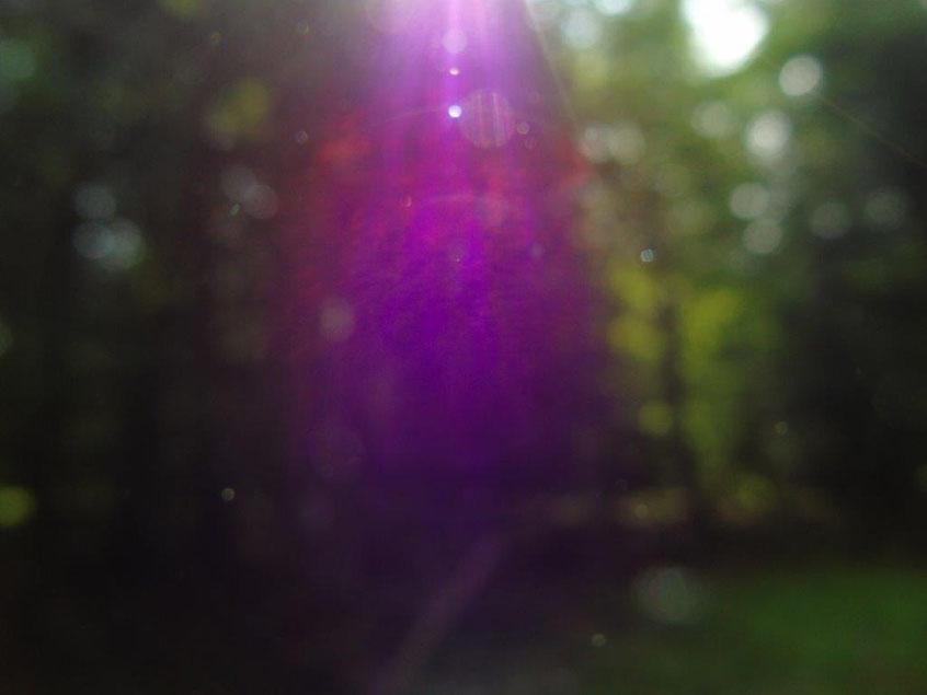 Purpurfarbene Schwingung für Macht - Würde - Spiritualität, Quelle: www.lichtwesenfotografie.com