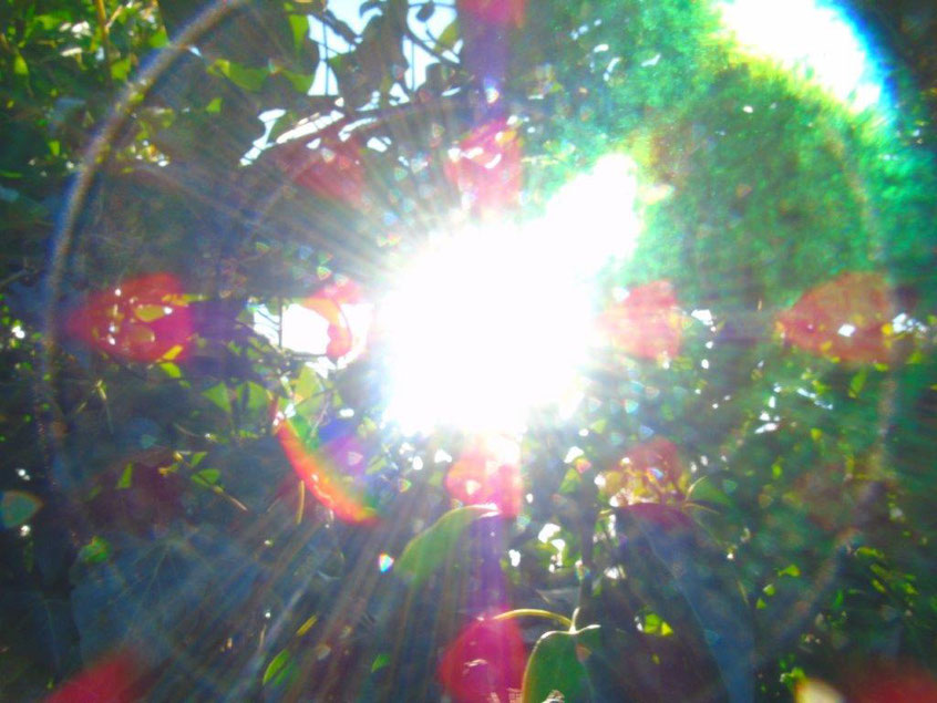 Ich bin ein Portal.....Quelle: www.lichtwesenfotografie.com