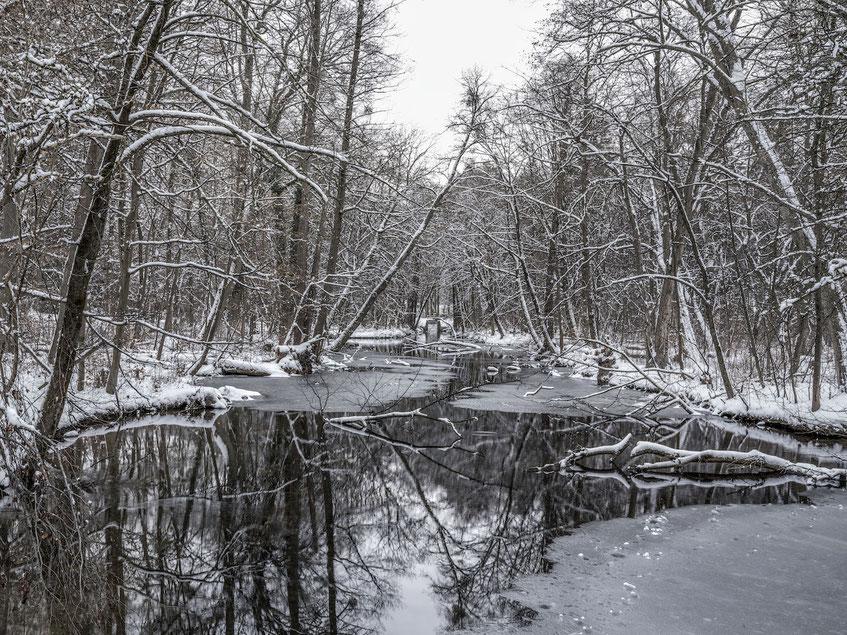 Das  Maximilianeum im Schnee als Farb-Photographie, Muenchen, Bayern