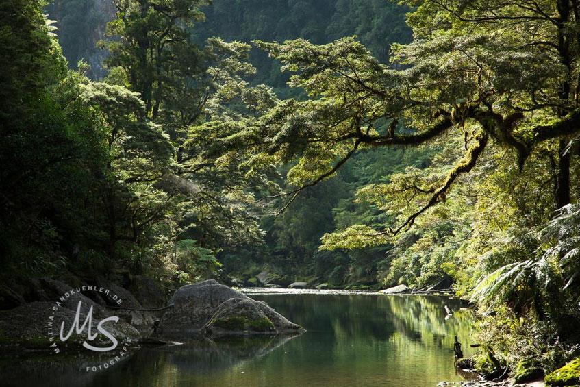 Grüne Flusslandschaft, Zen Fotokollektion, ©Martina Sandkühler