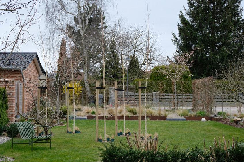 dieartigeGARTEN // März, Wintergarten - Birkenwäldchen+Steppenbeet+Hay Lounge-Sessel