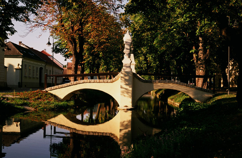 Foto: Weinstraße Kamptal