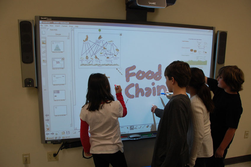 Integrate the best edtech tools that match your students' needs