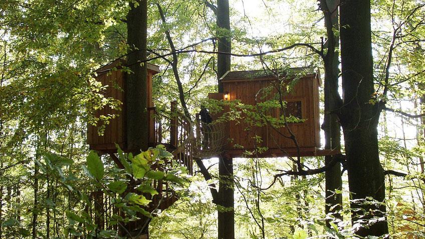 Baumhaus Baumtraum, Bild: Baumhaushotel Solling.