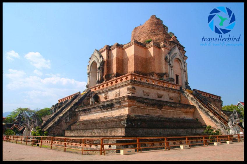 Wat Chedi Luang Worawihan Temple in Chiang Mai