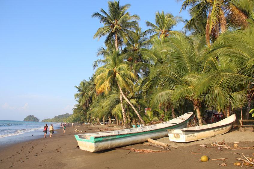 Wanderung an der Küste im wilden Chocó - Erlebnisbausteine Reisen Kolumbien