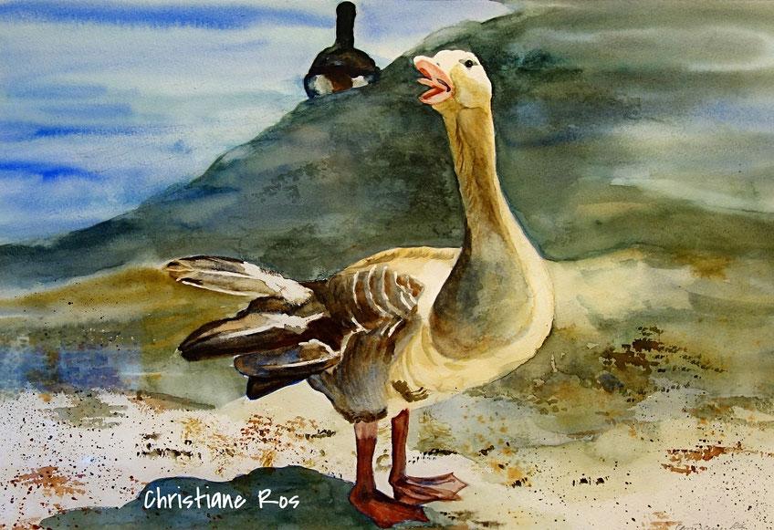 gemaltes Bild Gans © Christiane Ros