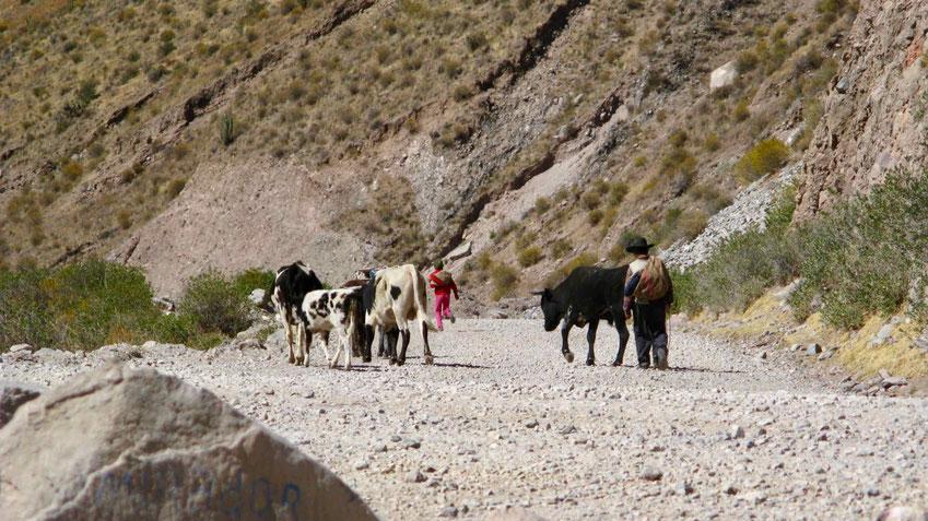 Peru Reisen: Tipps und allgemeine Informationen