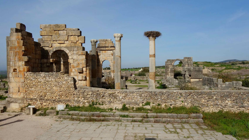 Meknès und Volubilis im Norden Marokkos - Reisetipps und Informationen