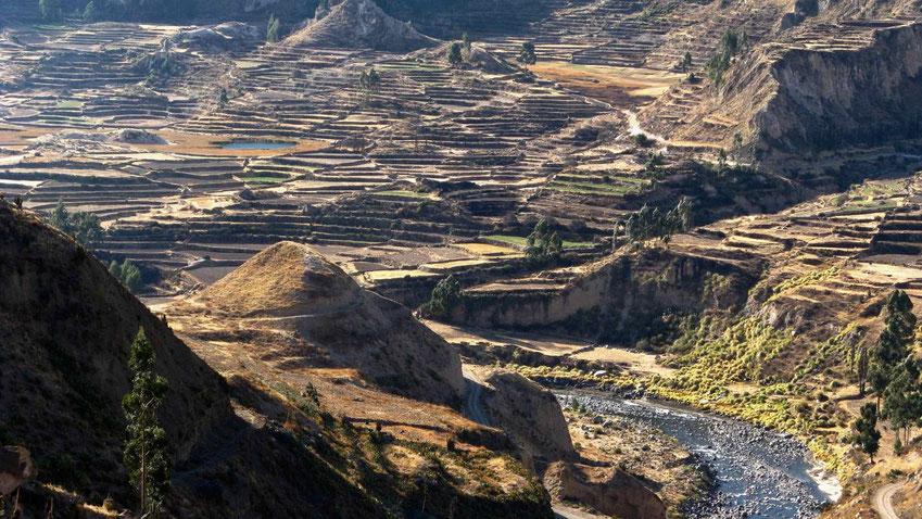 Peru Reise: Trekking im Colca Canyon. Reisebericht.