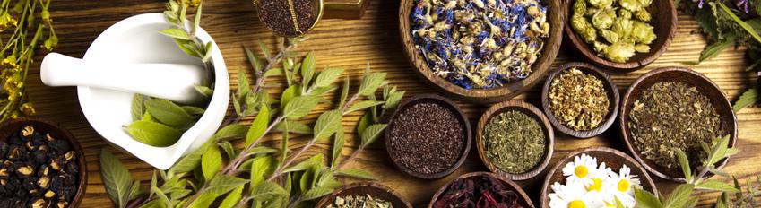Heilpflanzen - wichtig für heilpraktische Anwendungen wie Aromatherapie