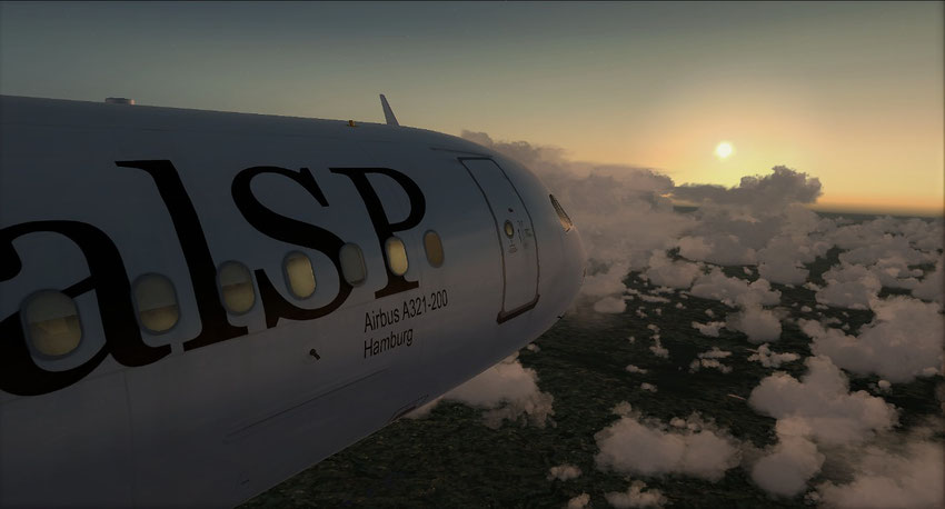CEO Edition - Sir Simon - Airbus - A320 - A321 - RSP - RoyalSirPlus - RoyalSP - Airline - Royal - FSX - Flight Simulator - Virtual Airline - VA