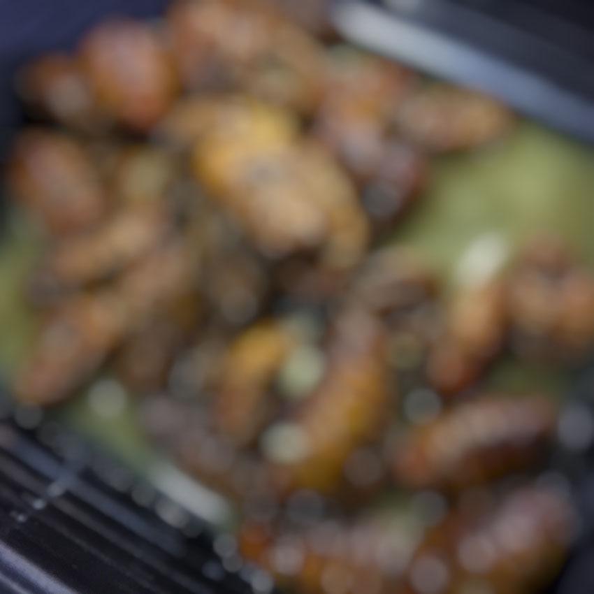 2軒目の刺身屋で出された蚕の幼虫。森の味がしました。不快な思いをする人もいるのは確実なのでディテールは森の中。