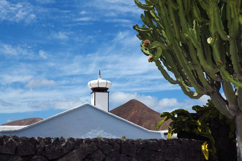 Garten mit Euphorbien. Übereinstimmung der Formen von Natur (Vulkanberg) und Architektur