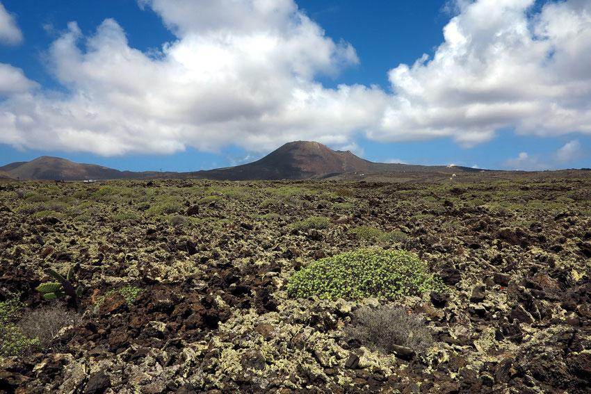 Vulkan Monte Corona und Malpais.