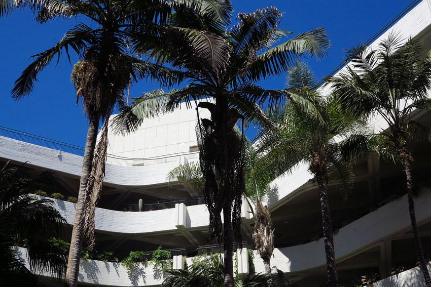 Luxushotel Las Salinas, Architekt: Fernando Higueras, Gartengestaltung: César Manrique, 1977