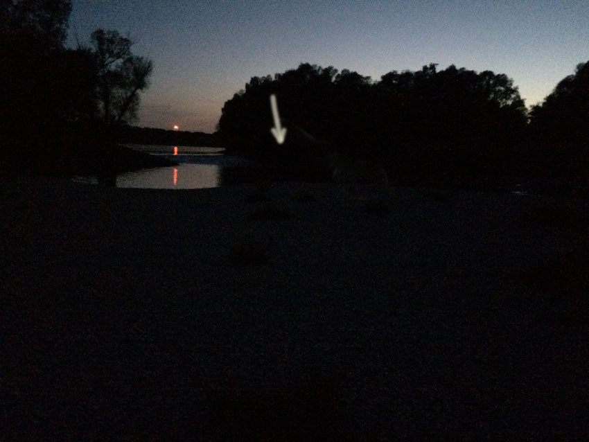 3.Mai, 21:00 Uhr, ungefähre Lichtverhältnisse in Schönau an der Donau. Nichts besonderes zu sehen, oder?
