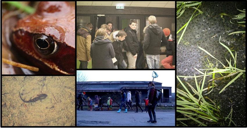site de rencontre gratuit pour gay statistics à La Roche-sur-Yon
