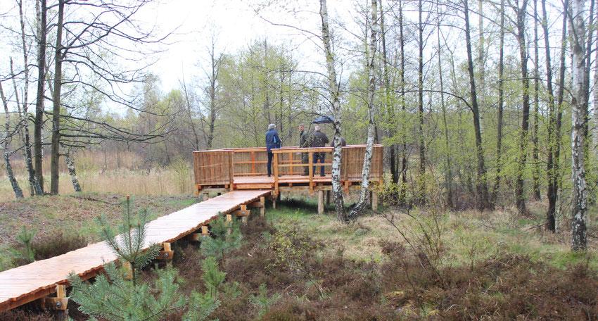"""Parc de Naturschutzgebietes """"Königesbrücker Heide"""""""