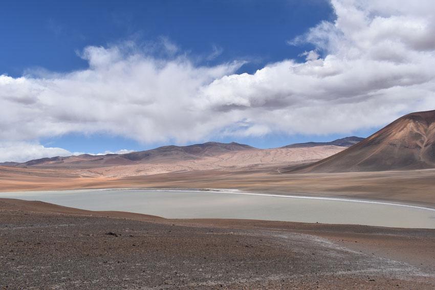 Laguna de La Azufrera. Chile.