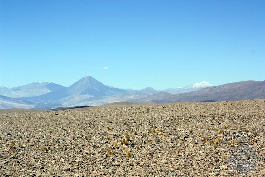 Siempre, con su imponente presencia dominando la zona, el volcán Peinado controla nuestros desplazamientos.
