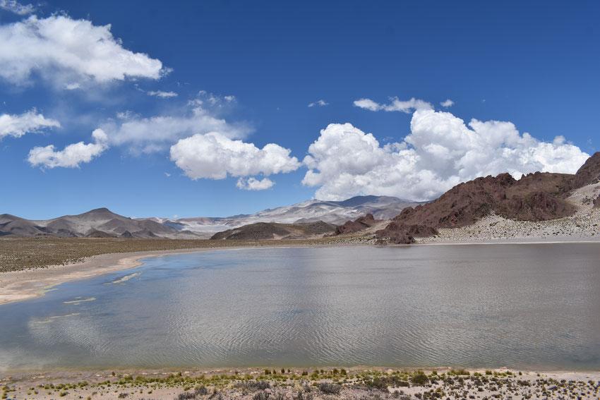 Laguna La Alumbrera. Catamarca