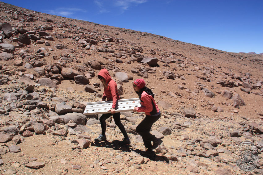 """Todos ayudan, los """"sherpas"""" serán para una próxima travesía."""
