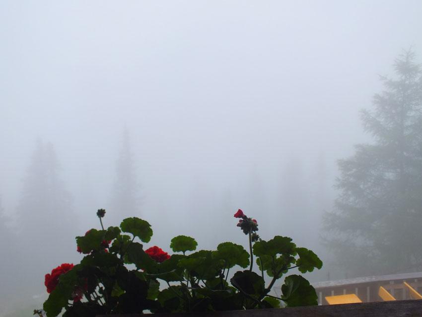 Pleisenhütte, morgens bei Beginn des Rückwegs nach Scharnitz