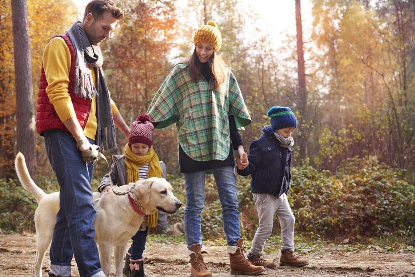 Camping mit Hund in naturnaher Umgebung
