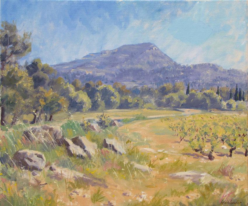 Tony Wahlander (Wåhlander) Paysage de Provence Tableaux du mont du Grand Bessillon et la plaine de Pontevès