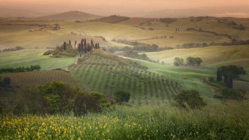 Tuscany mon amour II