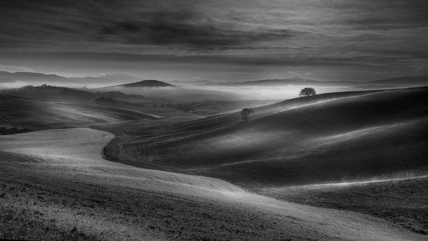 My Magical Tuscany in b/w
