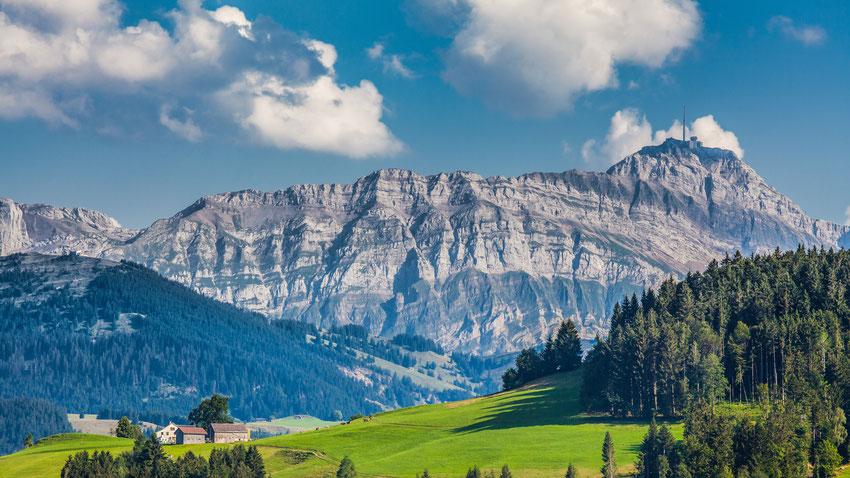 Achtsamkeit - René Mohn - Praxis - Training - Coaching - Lehre - Ausbildung - Beratung - Kommunikation - St. Gallen - Schweiz - Deutschland - Österreich
