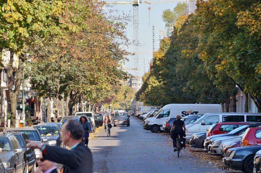 Blick von der Heinrich-Roller-Straße