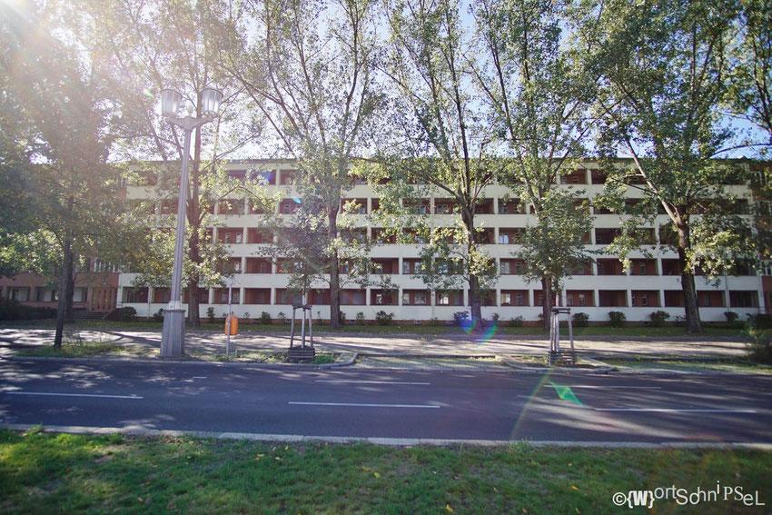 die Laubenganghäuser sind die ersten fertiggestellten Bauten, die nach dem Zweiten Weltkrieg auf der Großen Frankfurter Straße entstanden sind