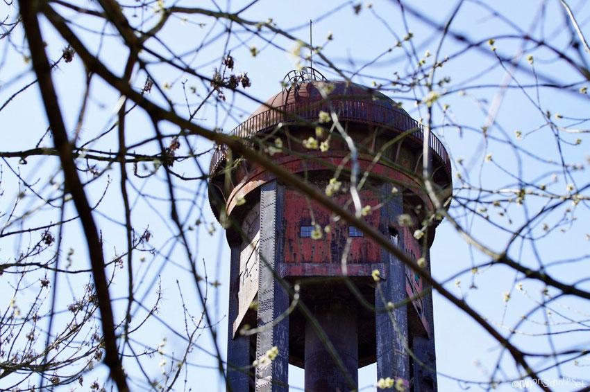 das Wahrzeichen des Parks - der Wasserturm